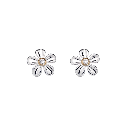 Picture of Silver & yellow gold plated CZ set flower earrings